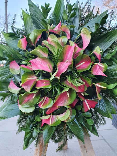 Duży wieniec z anthurium tonacja różowa (1)